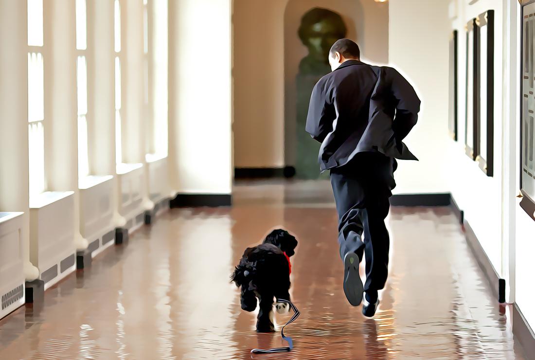 obama and dog